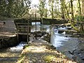 Cotehele Mill, Weir - geograph.org.uk - 1211258.jpg