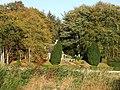 Cottage garden - geograph.org.uk - 586357.jpg