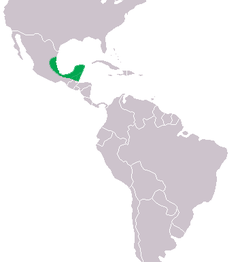 Mapa de distribuição do crocodilo-de-morelet