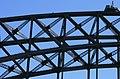 DG Sydney Harbour Bridge 4.jpg