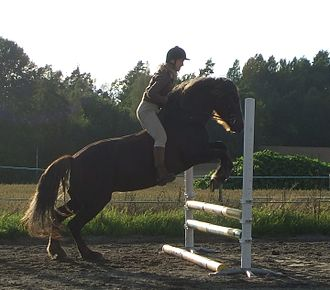 Bareback riding - Riding bareback over a jump