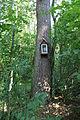 Dauginčių koplytėlė medyje 2015.JPG