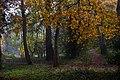 Dene Wood IMG 7018 - panoramio.jpg