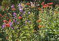Denver Botanic Gardens (181018583).jpg