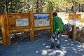 Deschutes National Forest Whychus Creek Overlook-3 (37000820136).jpg
