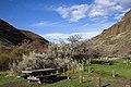 Deschutes Wild and Scenic River -- Jones Canyon (26216844753).jpg