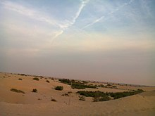 Desert dunes of the kingdom of saudi arabia - panoramio.jpg