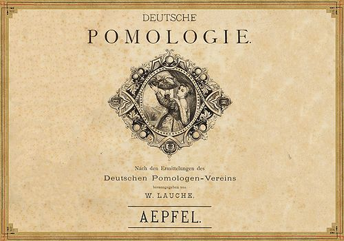 Deutsche Pomologie - Aepfel - 000.jpg