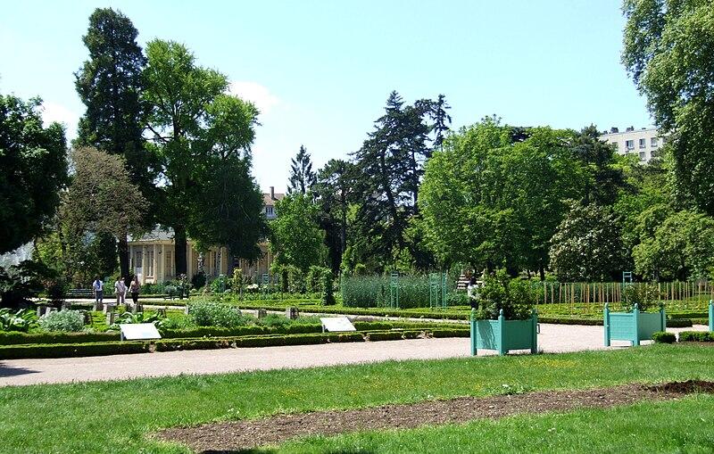 Fichier dijon jardin de l 39 arquebuse jardin botanique 3 for Jardin l encyclopedie