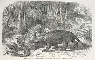 Édouard Riou - Riou's depiction for La terre avant le deluge of Iguanodon battling Megalosaurus