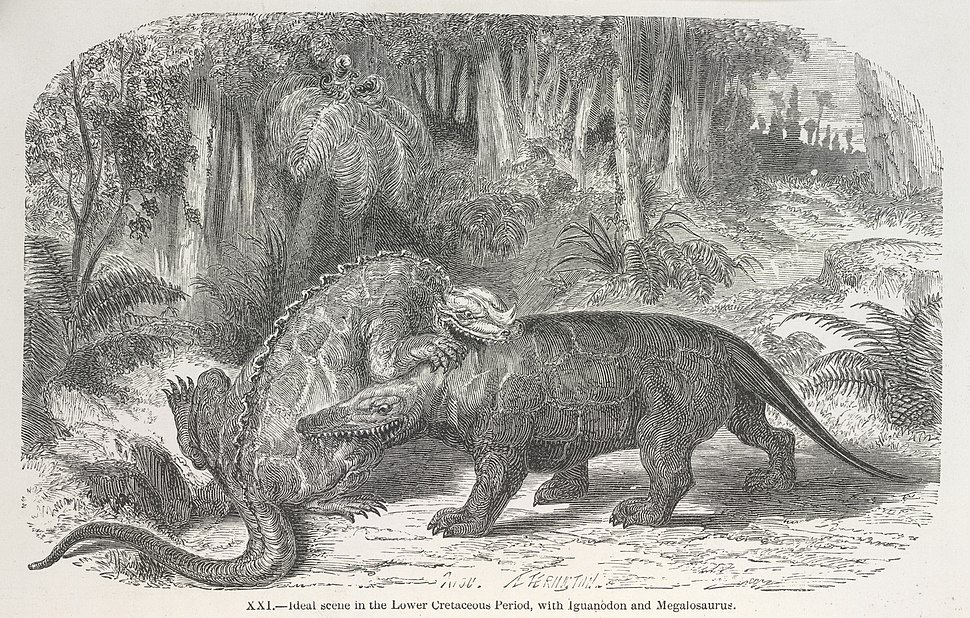 Dinosaurs fighting - The World before the Deluge (1865), plate XXI - BL