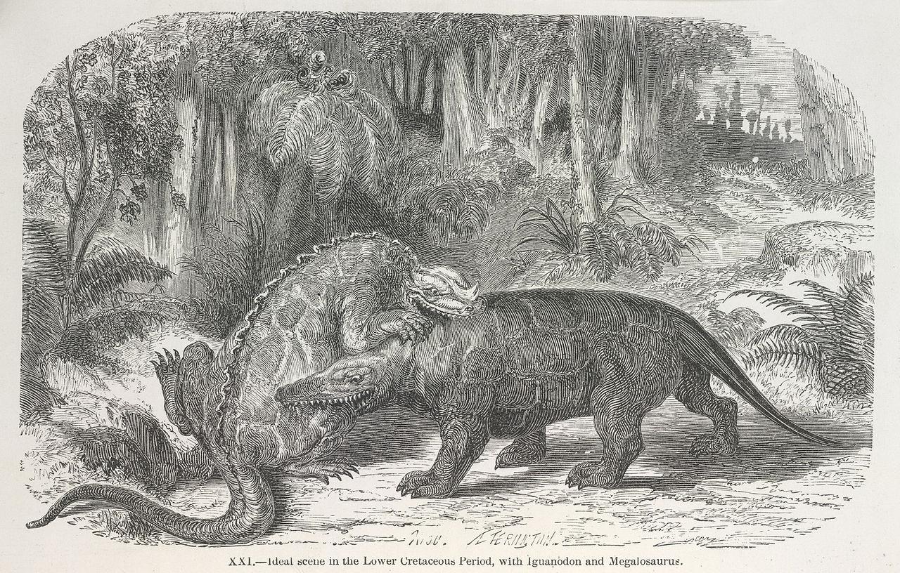 Filedinosaurs Fighting - The World Before The Deluge 1865, Plate Xxi - Bljpg -8056