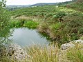 Disused quarry near Stroan Hill - geograph.org.uk - 551065.jpg