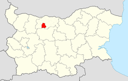 Dolni Dabnik Municipality within Bulgaria and Pleven Province.