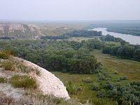 Don in Volgograd Oblast 003.JPG