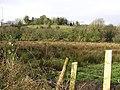 Dooish Townland - geograph.org.uk - 107284.jpg