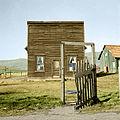 Dorothealange color 8b35311a.jpg