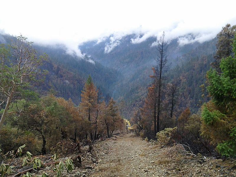 File:Douglas Complex Fire (13999558978).jpg