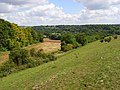 Downland and woods, Woodford - geograph.org.uk - 490613.jpg