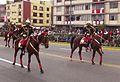 Dragones Mariscal Nieto 2.JPG