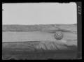Dragonfana från senare delen av 1600-talet - Livrustkammaren - 62679.tif