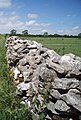 Drystone wall on the Mendips - geograph.org.uk - 187329.jpg