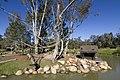 Dubbo NSW 2830, Australia - panoramio (65).jpg