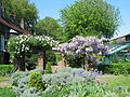 Edwardian garden (horizontal).jpg