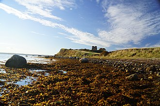 Kalø Castle - Kaloe Castle Ruin lies on a peninsula 30 km north of Aarhus in Denmark