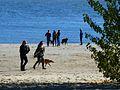 Ein Spaziergang am Falkensteiner Ufer In Hamburg.jpg