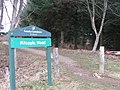 Entrance to Pitcaple Woods - geograph.org.uk - 1178293.jpg
