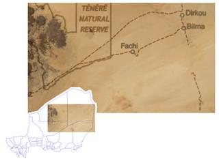 Bilma Commune in Agadez Region, Niger