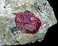 Eudialyte 15 mm, aegirine, albite.jpg