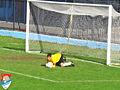 FK Obilić , Nikola Borović.jpg
