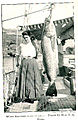 FMIB 32890 White Sea-Bass, Cynoscion nobilis.jpeg