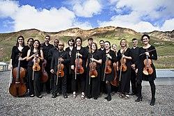 FSAF String Orchestra (7685611434).jpg