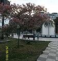 """Fantana """"Papadia"""", Strada Brailei, Galati, Romania.jpg"""
