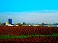 Farm Between Waunakee and Middleton - panoramio.jpg