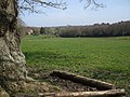 Farmland View South West of Sandy Down - geograph.org.uk - 395709.jpg