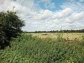 Farmland at Higher Ferry - geograph.org.uk - 33353.jpg