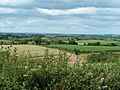 Fields near Newbuildings - geograph.org.uk - 1393632.jpg