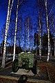 Finland 2014-03-16 (13386551613).jpg