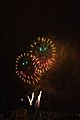 Fireworks - July 4, 2010 (4773770840).jpg