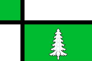 Tayshet - Image: Flag of Tayshet