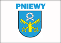 Flaga miasta pniewy.png
