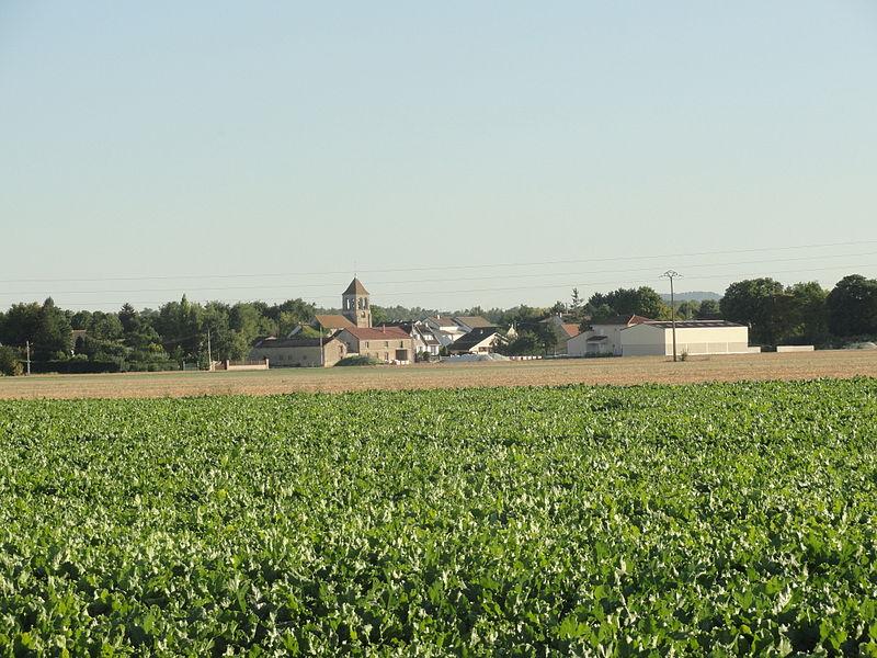 Vue du village de Flavigny (Marne).