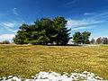 Flickr - Nicholas T - Louise W. Moore Park (4).jpg