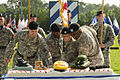 Flickr - The U.S. Army - 3rd ID Cake cutting.jpg