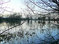 Flooded North Meadow 3 - geograph.org.uk - 1616266.jpg