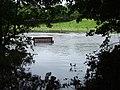 Flooded seat, Camowen River - geograph.org.uk - 925415.jpg